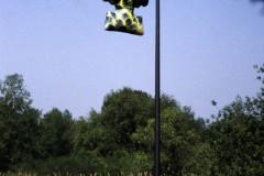 1999-Wunderbaum-Skulpturprojekt-Obing-1